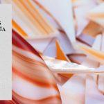 Convocatoria XIV edición Premios Nacionales de Artesanía