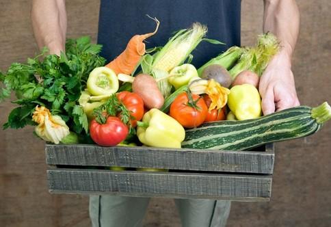Gastronomía sostenible, qué puedes hacer desde la cocina